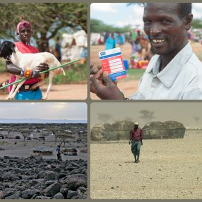 Kenya Government launches insurance program to protect its northern frontier herders against catastrophicdrought