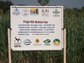 US ambassador to Burkina Faso visits ILRI-led Feed the Future Sustainable Intensification Innovation Lab project