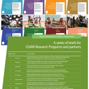 Capacity development in agri-food systems: Entry points for research