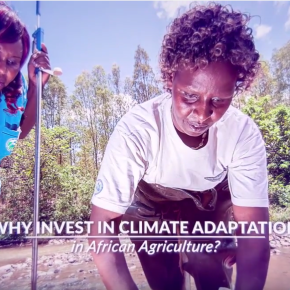 And in other news: Take a 3-min break this weekend to celebrate Africa's climate heroes and changeactions