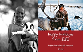 No mean feat: Putting reindeer and goat (and parts thereof) on holiday tables in the Arctic and Africa