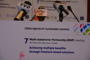 Livestock-based solutions for sustainable development in Africa