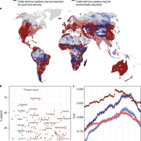 Variability in rainfall is increasing on global pastures important for food access and economies—Nature Climate Change