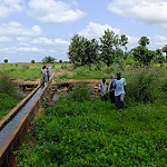 Irrigation boosts food security for Africa's smallholder households