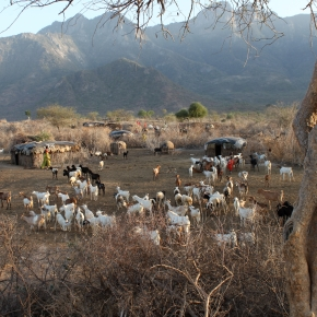 A better way for vegans, vegetarians, meat eaters and livestock herders alike—By ecologist IanScoones