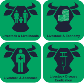 Livestock fact check – what's behind the data behind facts on livestock development?