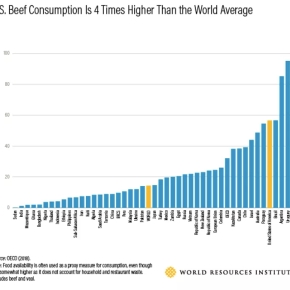 With huge variations in meat consumption, we're 'all in this existential crisis together'—Vox