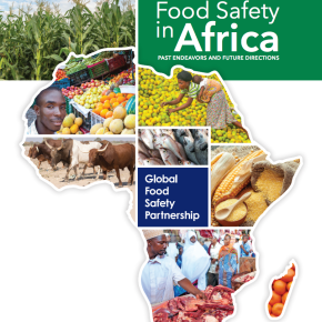 More public heath investment key to addressing food-borne diseases inAfrica