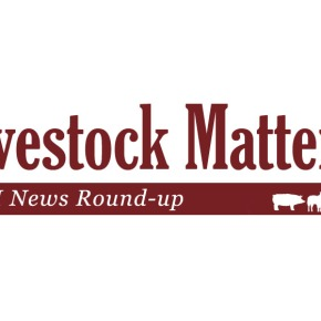 Livestock Matter(s): ILRI news 'round-up' January-February 2019