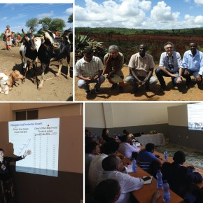 Paving the way for collaboration: ILRI board members visit goat breeding program and Arba Minch University in Ethiopia