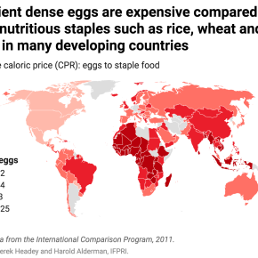 A 'caloric calculus' with big consequences—healthy foods are expensive in poor countries, unhealthy foods cheap in rich countries—New IFPRI paper