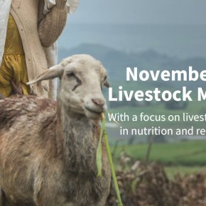 This is 'Livestock Month' on Agrilinks: USAID's Andrew Bisson on sustainable livestock for sustainabledevelopment