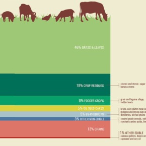 Inalienable imperative—More, and more sustainable, meat, milk, eggs and fish for more than one billion people