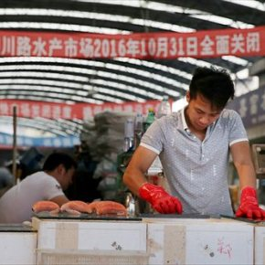Why shutting down Chinese 'wet markets' could be a terrible mistake