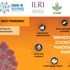 The seven deadly drivers of zoonotic disease pandemics