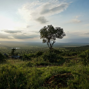 ILRI's Kapiti Research Station to serve as conservancy and critical wildlife corridor for Nairobi National Park