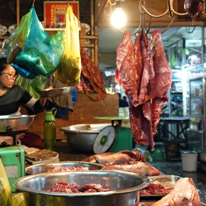 Wildlife markets in the pandemic: Prohibit or preserve them? Ban or promotethem?